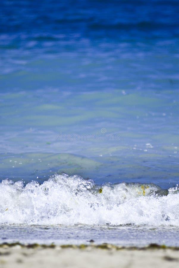 Blue Sea stock photography