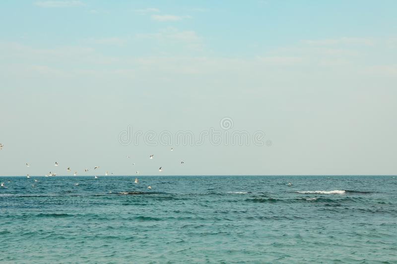 Blue sea water with small waves and seagulls against sky. Space for text stock photos