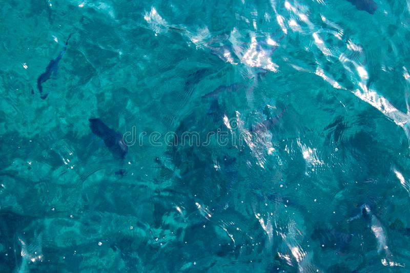 Blue sea water stock photos