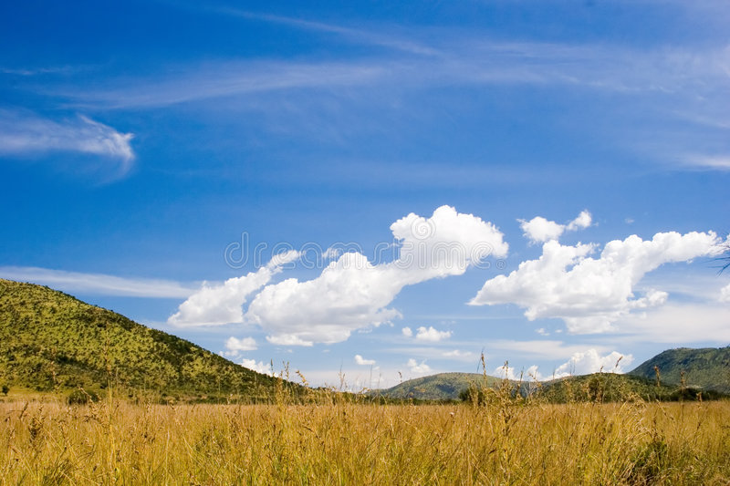 Blue skies royalty free stock photo