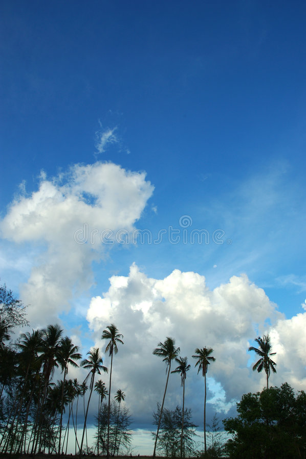 Blue skies royalty free stock photo