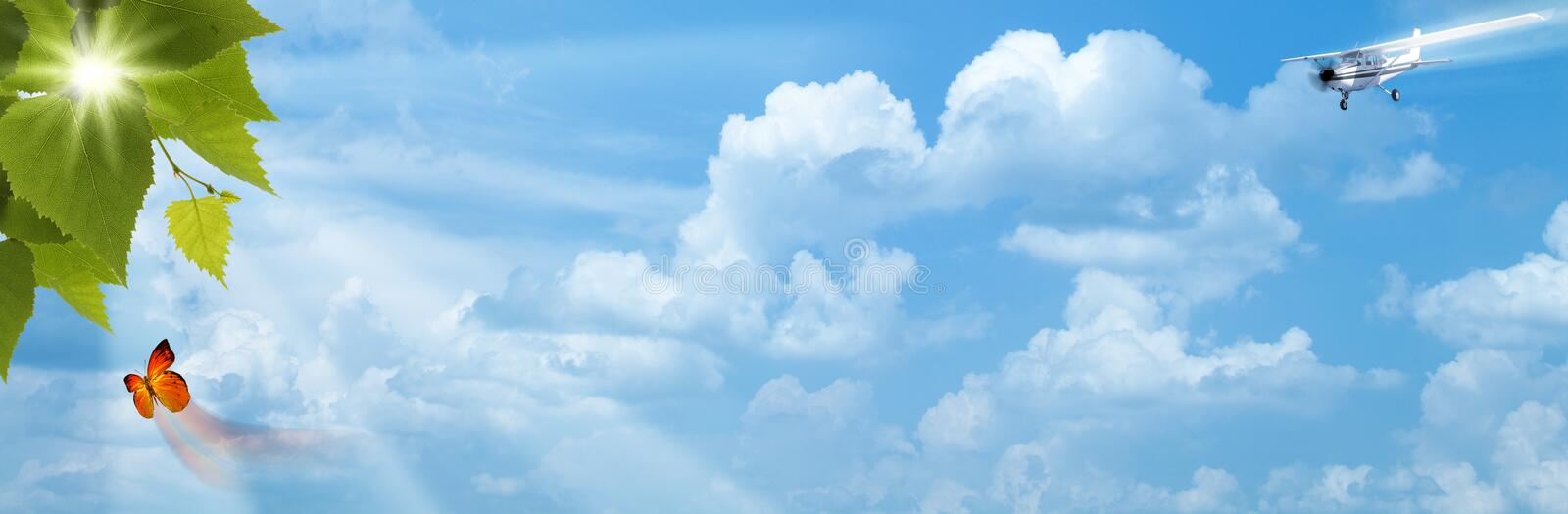 Download Blue skies with bright sun stock image. Image of plant - 24835999