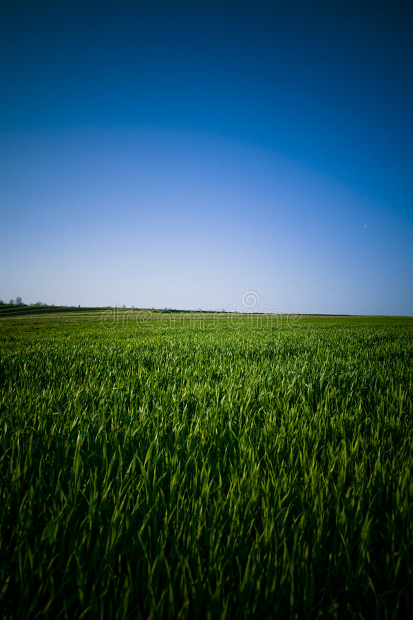 Blue skies and green grass stock photos