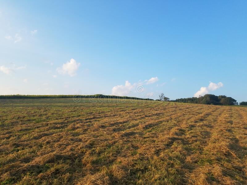 Blue skies and hay fields stock photos