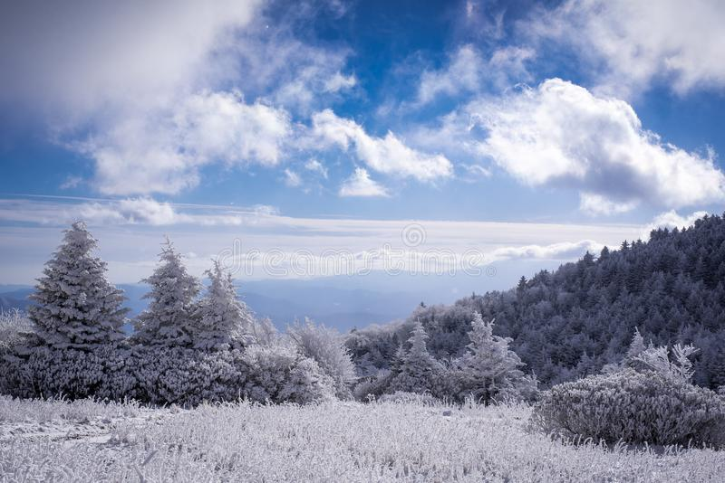 Blue skies over the Appalachian Trail. Blue skies over a frigid landscape along the Appalachian Trail on a brisk hike on the border of North Carolina and royalty free stock photography