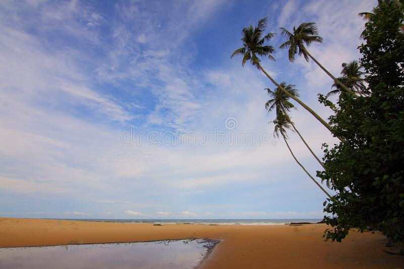 Blue Sky Above Beach During Daytime Free Public Domain Cc0 Image