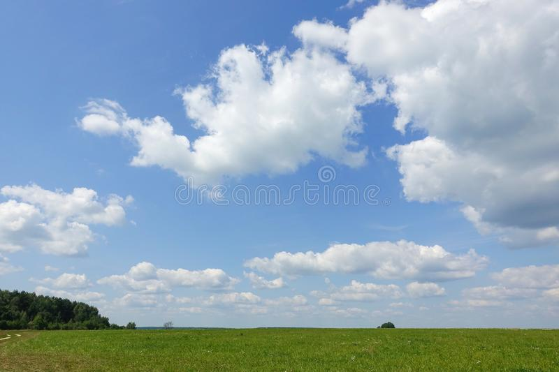 Blue sky and beautiful cloud with meadow tree. Plain landscape background for summer poster. The best view for holiday.  royalty free stock photo