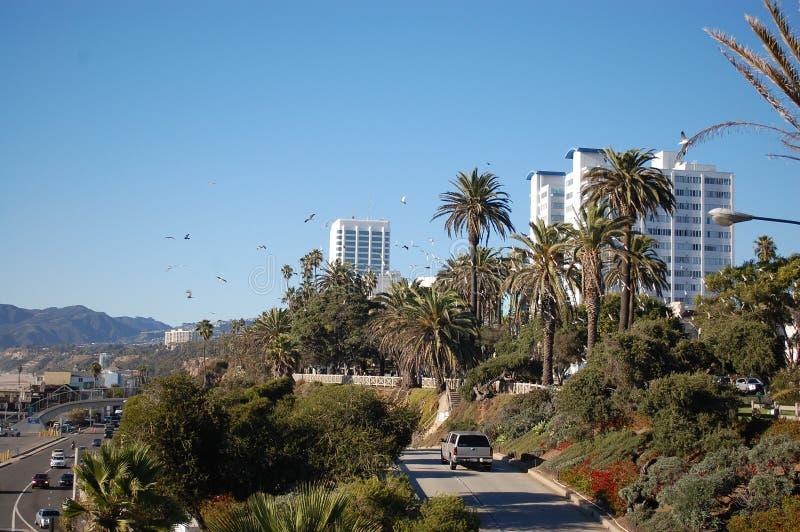 Download Blue sky stock photo. Image of blue, park, garden, bird - 33639904