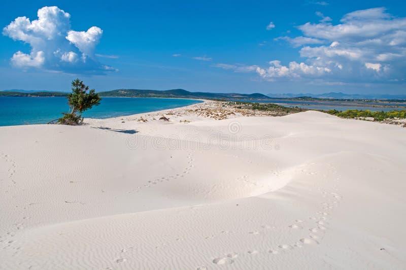 Sandy beach in Sardinia, Italy. Blue sky, clear sea and sand dunes on the island of Sardinia royalty free stock photography