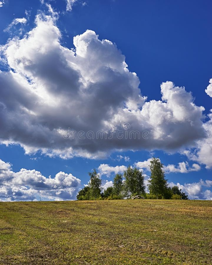 Blue sky and cloud with trees. Plain landscape background for summer stock photo