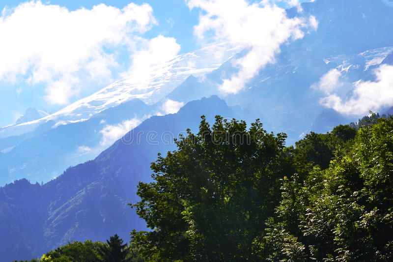 Blue Sky and Clouds, Green Trees and Glacier in Background. Blue Sky with clouds and green alpine trees in forefront and snowy mountain glacier to the rear royalty free stock images