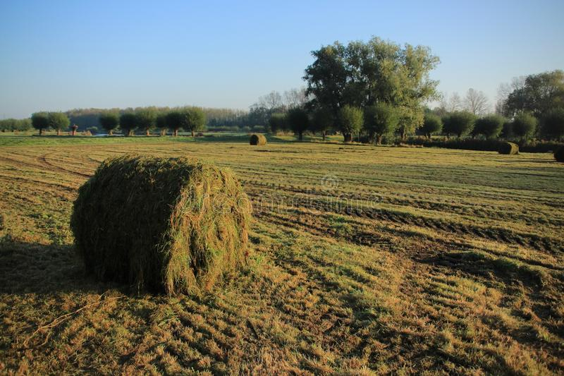 Blue sky with clouds on a misty day and bales of hay in the park in the autumn. royalty free stock photography