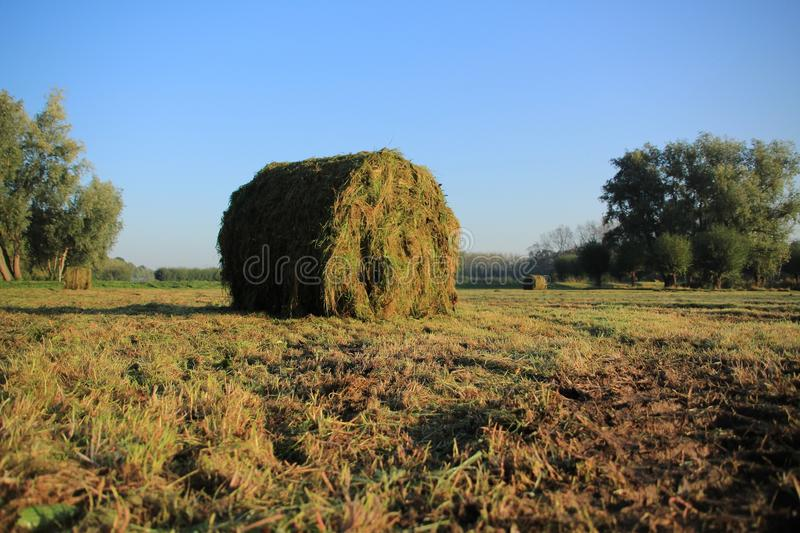 Blue sky with clouds on a misty day and bales of hay in the park in the autumn. stock photo