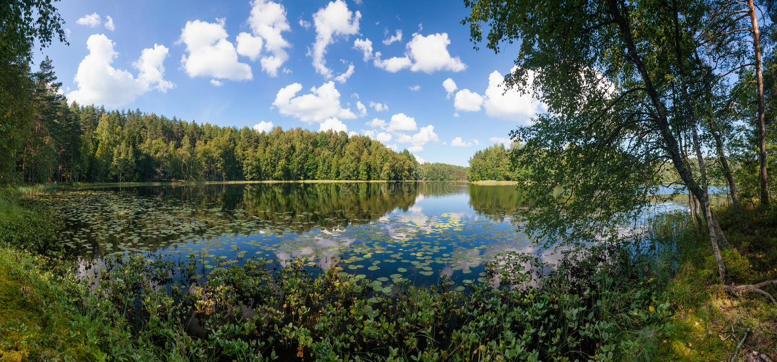 Summer day on remote calm lake in a boreal forest panorama stock photos