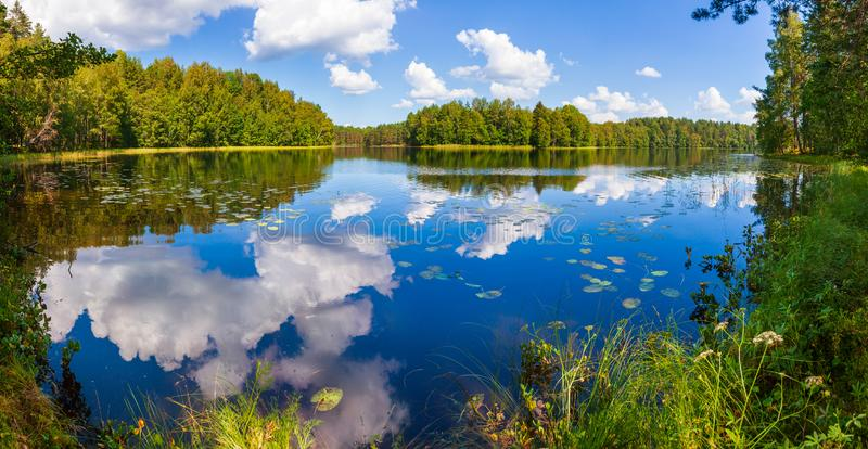 Summer day on remote calm lake in a boreal forest panorama royalty free stock image