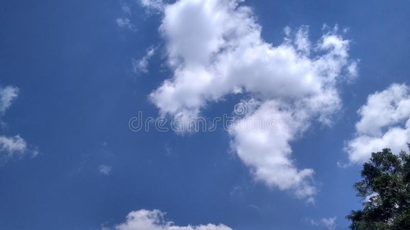 Blue sky and clouds. Tree, nature, view, scenery, landscape, outdoor stock photo