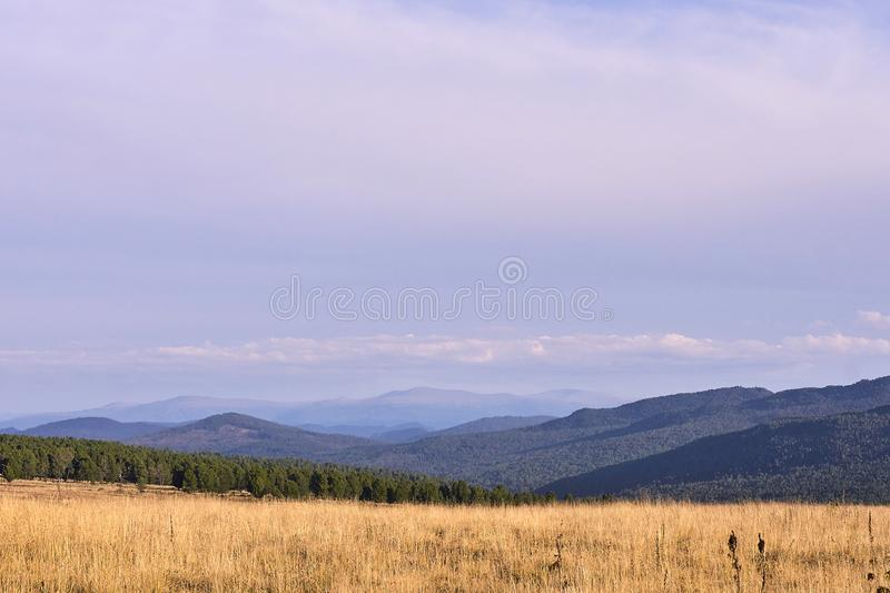 Blue sky. Green Forest. High mountains. Field stock photo