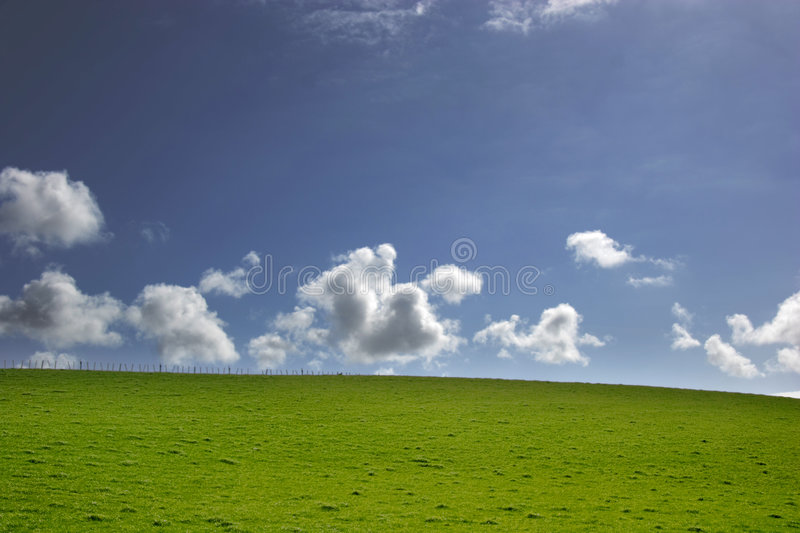 Blue sky and Green grass stock photo
