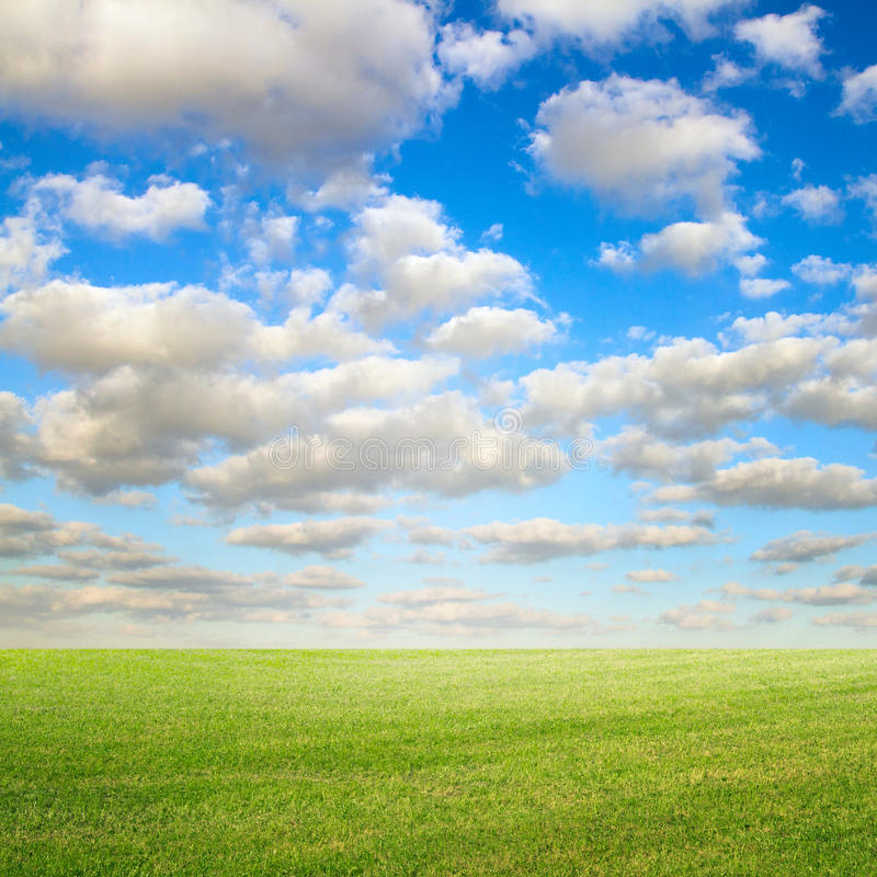Blue Sky And Green Meadow Stock Photos