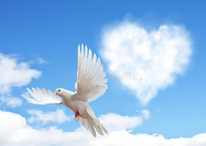 Blue sky with hearts shape clouds and dove. royalty free stock photo
