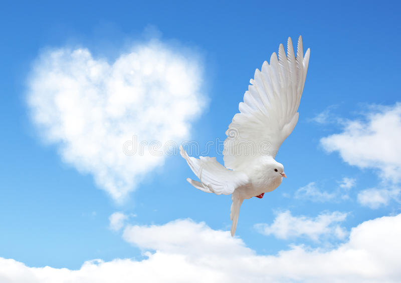 Blue sky with hearts shape clouds and dove. royalty free stock image