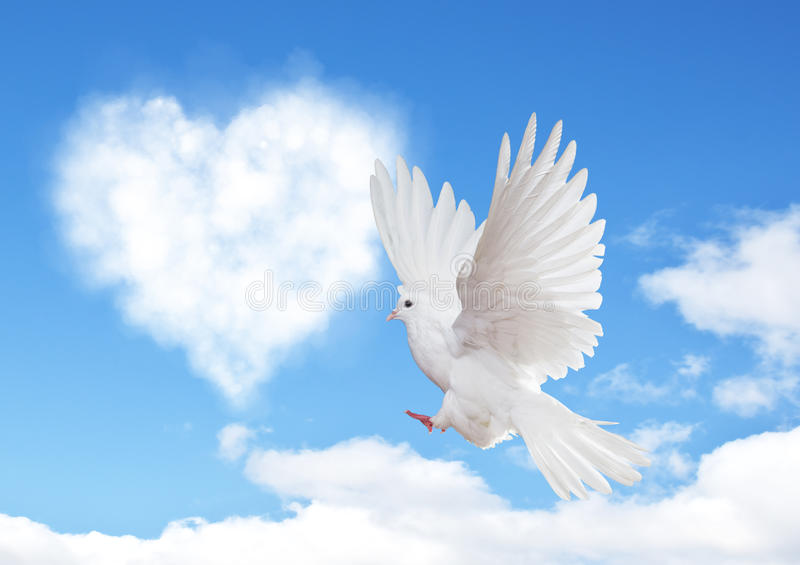 Blue sky with hearts shape clouds and dove. stock image