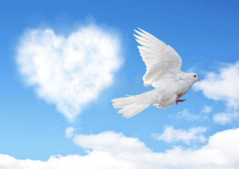 Blue sky with hearts shape clouds and dove. stock photos
