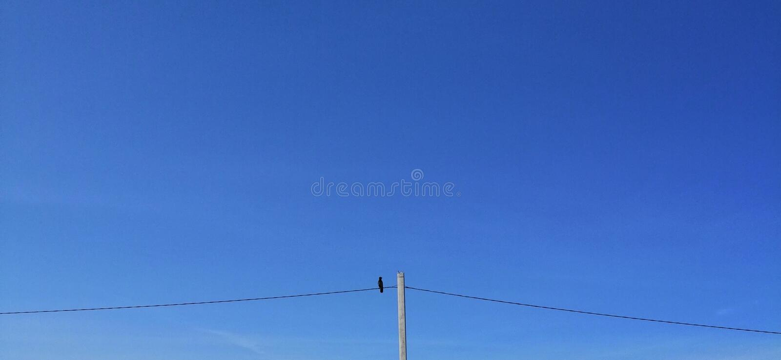 Blue sky lines of electric gear on them sits avianaubor royalty free stock images