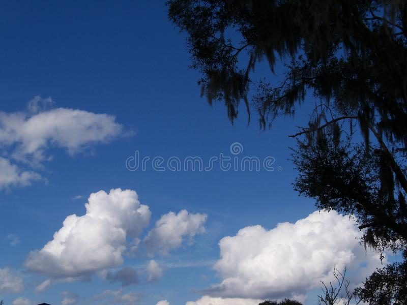 Blue sky and multiple kinds of white clouds. Bright blue sky with different kinds of white clouds showing portents of the weather to come royalty free stock image