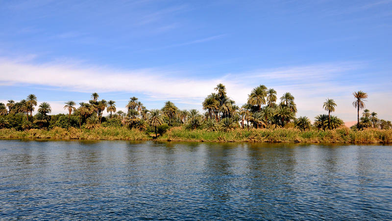 BlUE SKY.THE NILE AND PALMS royalty free stock image