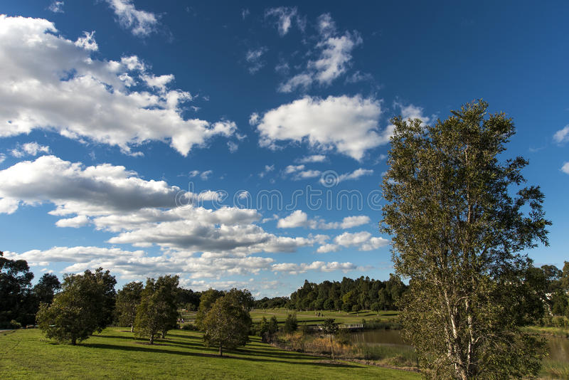 Download Blue sky over the park stock image. Image of solitude - 32148539