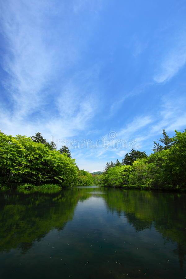 Download Blue sky and pond stock photo. Image of blue, asia, weather - 19803034
