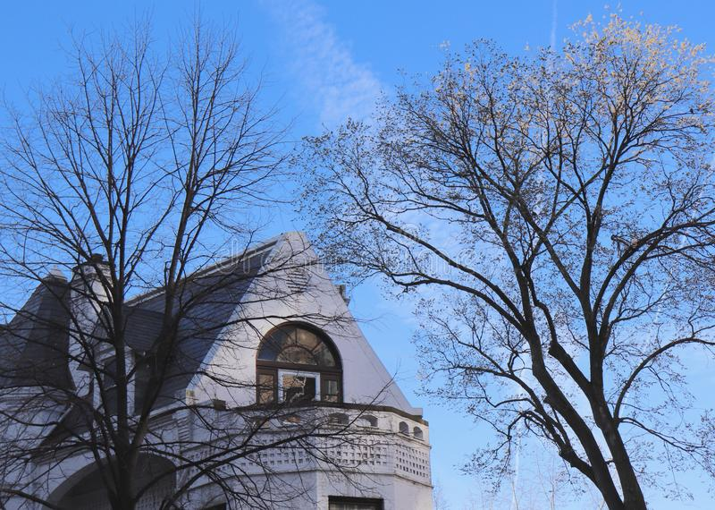 Blue sky With Some Mottled White Clouds Is backdrop for Bare Trees and Beautiful Building Top. A blue sky with bare trees and the top of an architecturally stock image