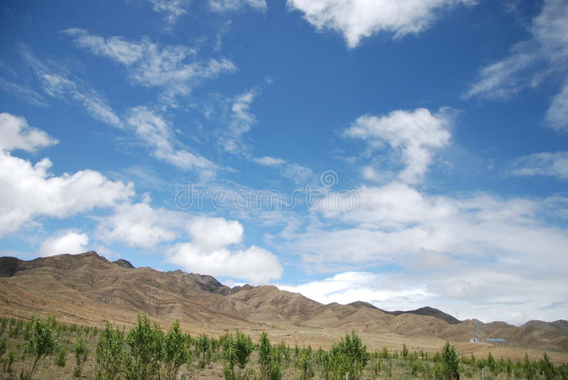 The blue sky and trees royalty free stock photos