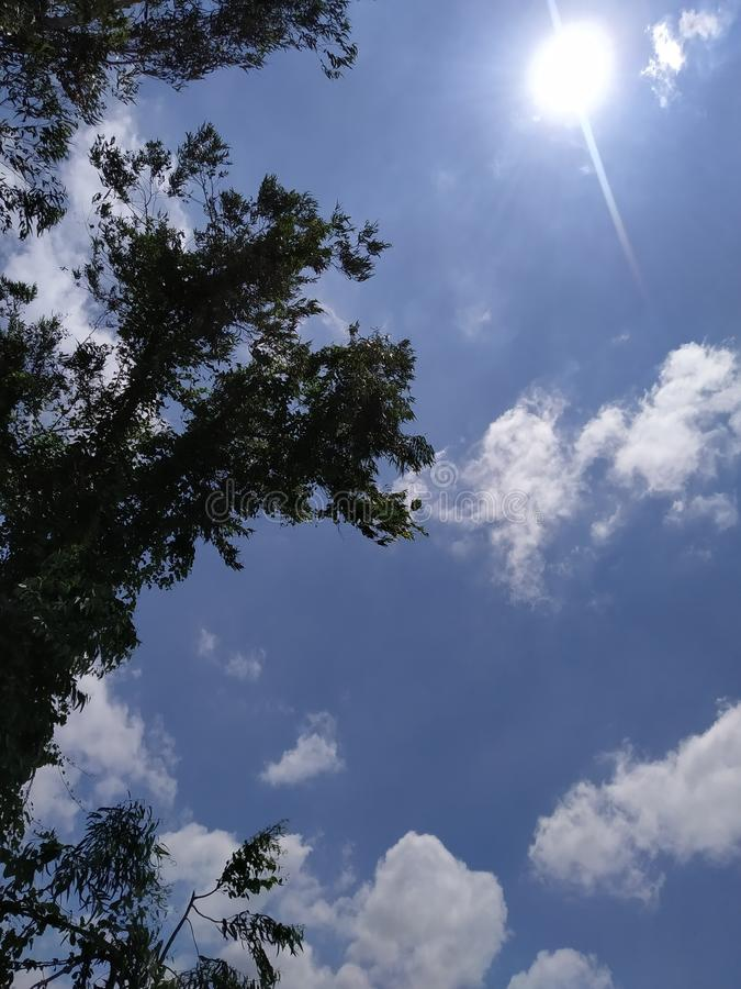 Blue sky with tress and clouds. Cool royalty free stock photos