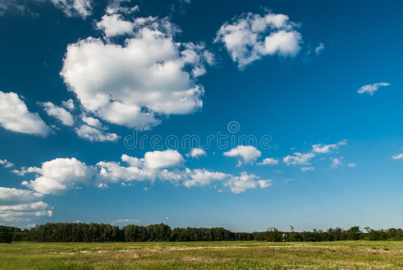 Download Blue sky and white clouds stock photo. Image of fast - 39744130