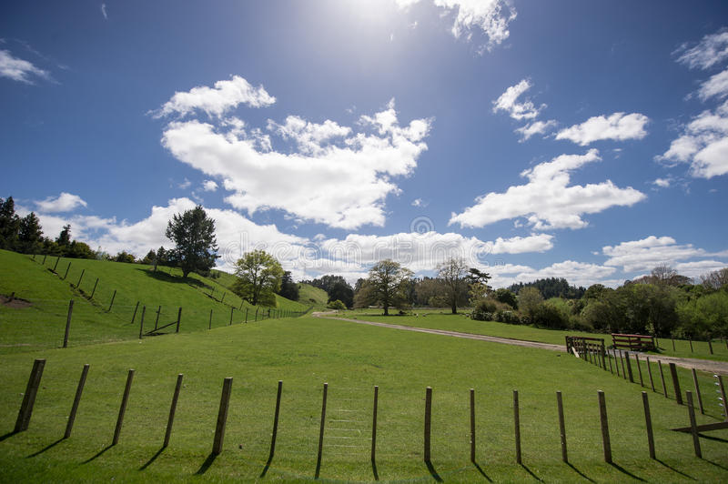 Blue sky and white clouds grass. Rolling green hills and a blue sky New Zealand's beautiful ranch royalty free stock images