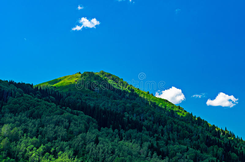 Blue sky, white clouds, green Altai Mountains at noon. Ridder, Kazakhstan stock photography