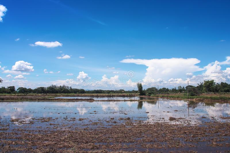 Blue sky with white clouds group pattern floating and Landscape nature of land prepare for plant rice field  , agricultural area royalty free stock photography
