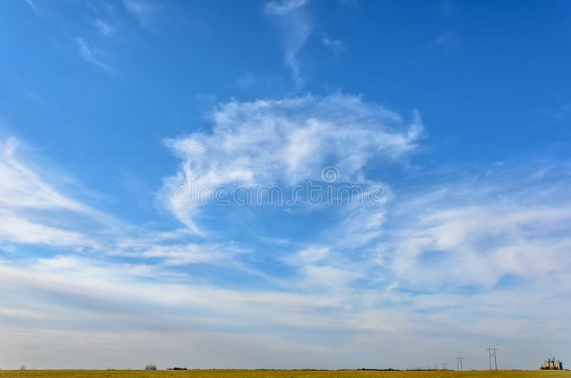 Blue sky with white, fluffy, tender cirrus clouds, yellow field, stock images