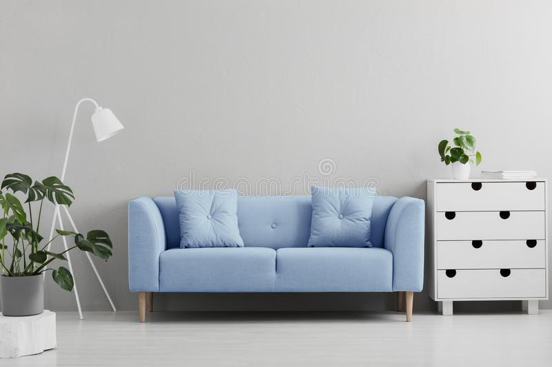 Blue sofa between white lamp and cabinet in grey living room int. Erior with plants. Real photo concept stock photography