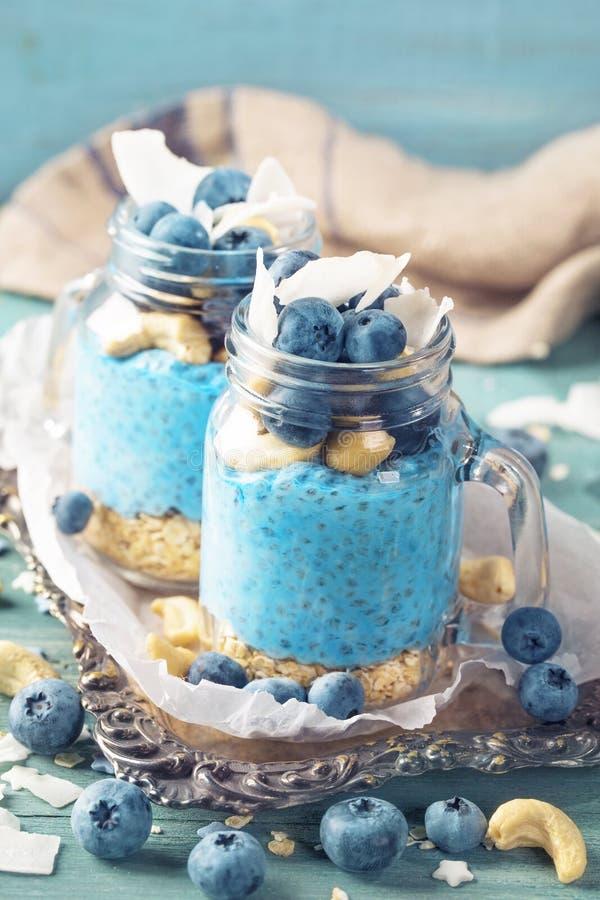 Blue spirulina chia pudding royalty free stock image