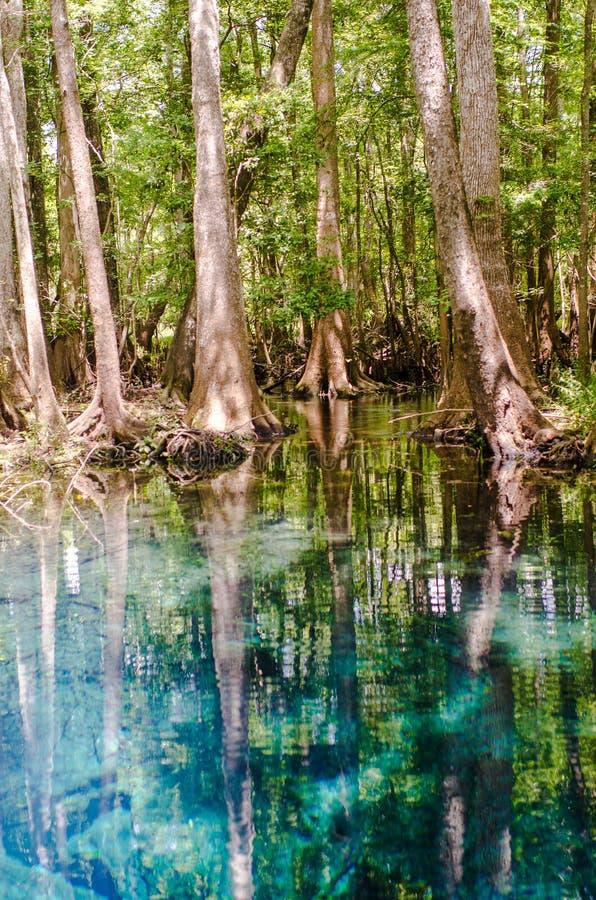 Blue Springs imágenes de archivo libres de regalías