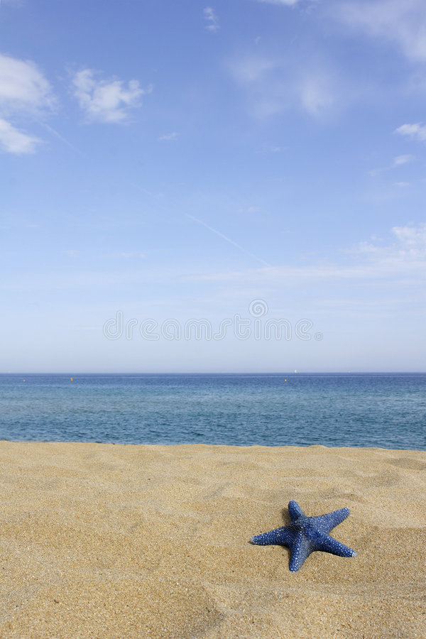 Download Blue Starfish On Empty Beach, Stock Photo - Image of relax, empty: 3034316