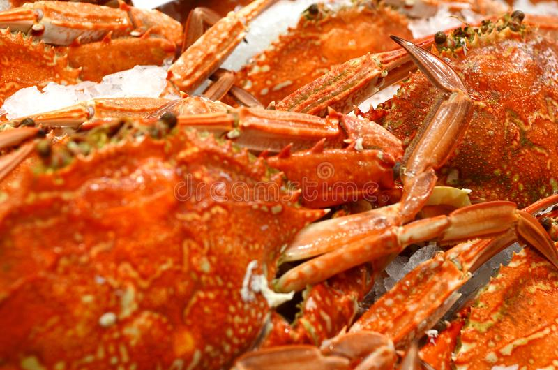Seafood at fish market. Blue Swimmer Crab at fish market in Sydney, New South Wales, Australia stock image