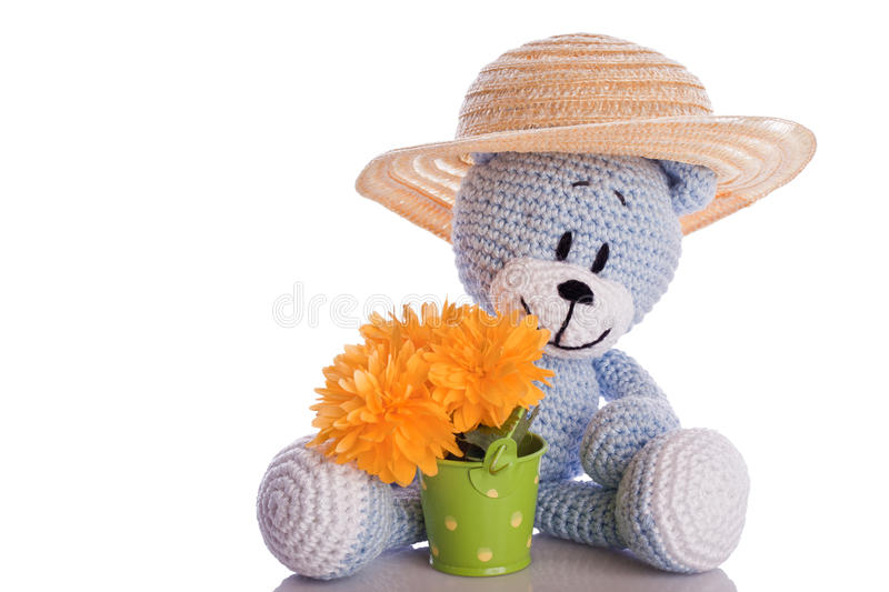 Blue teddy stock images