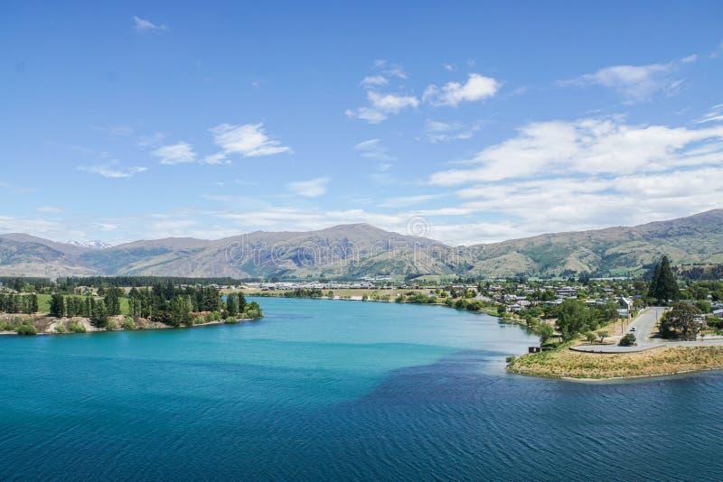 Blue Tekapo lake with tall pine and mountain range stock photography