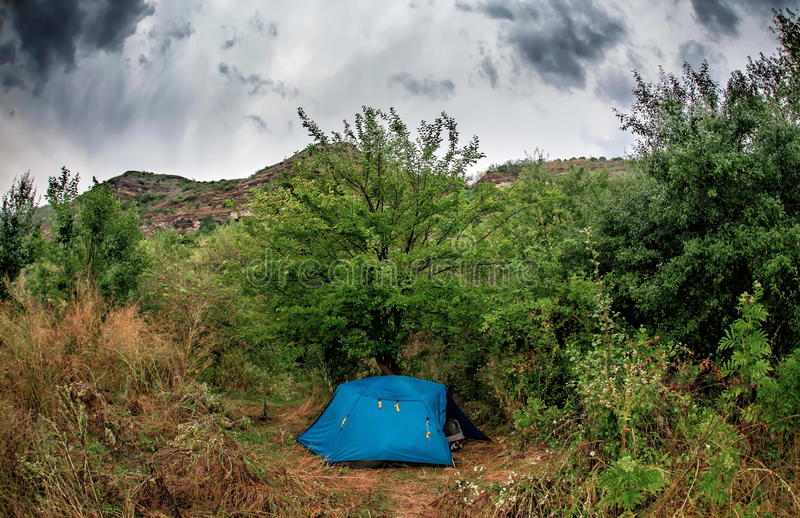 Download Blue tent in the bush stock photo. Image of background - 66110190 & Blue tent in the bush stock photo. Image of background - 66110190