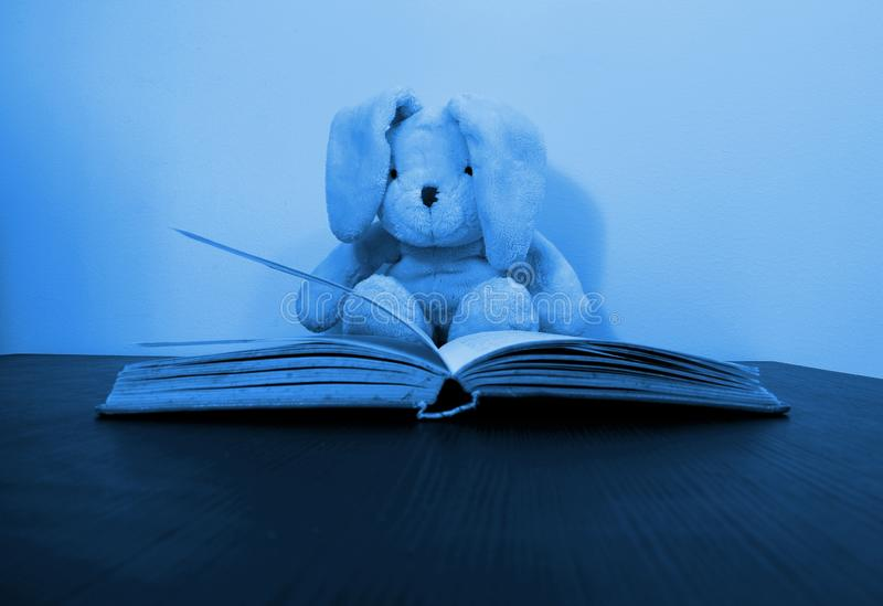Blue toned photo of a rabbit plush toy sitting behind an open book. A soft bunny toy with floppy ears is sitting behind an open book. Soft blue toned stock image