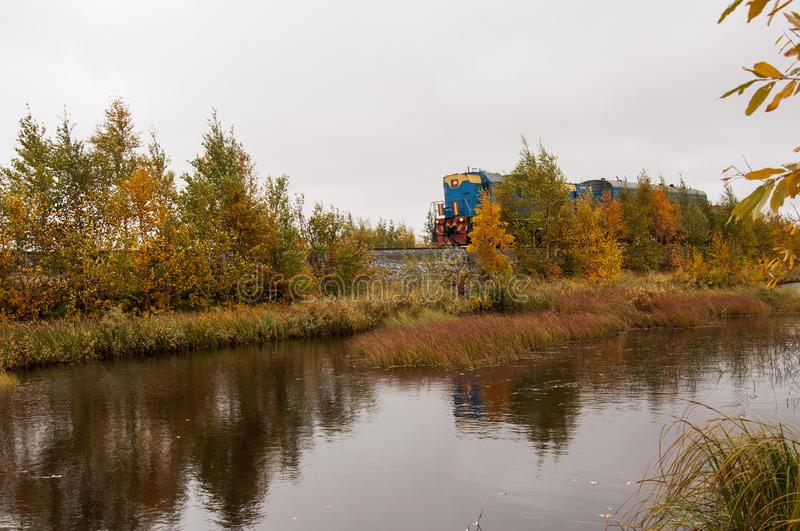 Blue train are going through yellow forest near the river. Autumn trees are reflecting in the water.  stock images